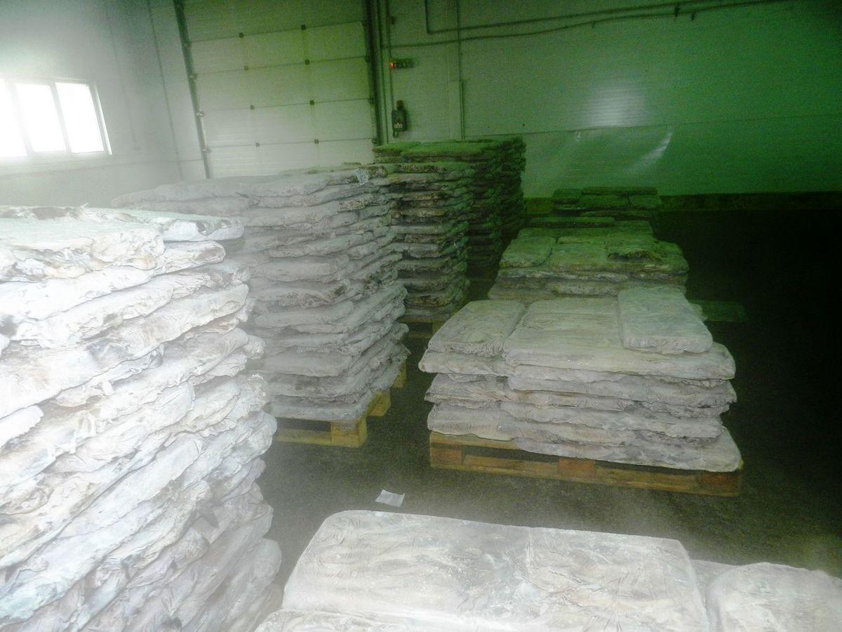 Те самые тонны животноводческих отходов, которые смешиваются с зерном и идут в пищу норкам