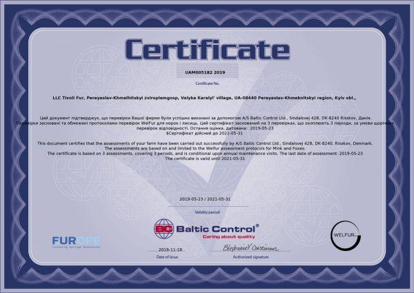 Сертификат welfur звероплемхоза Большая Каратуль