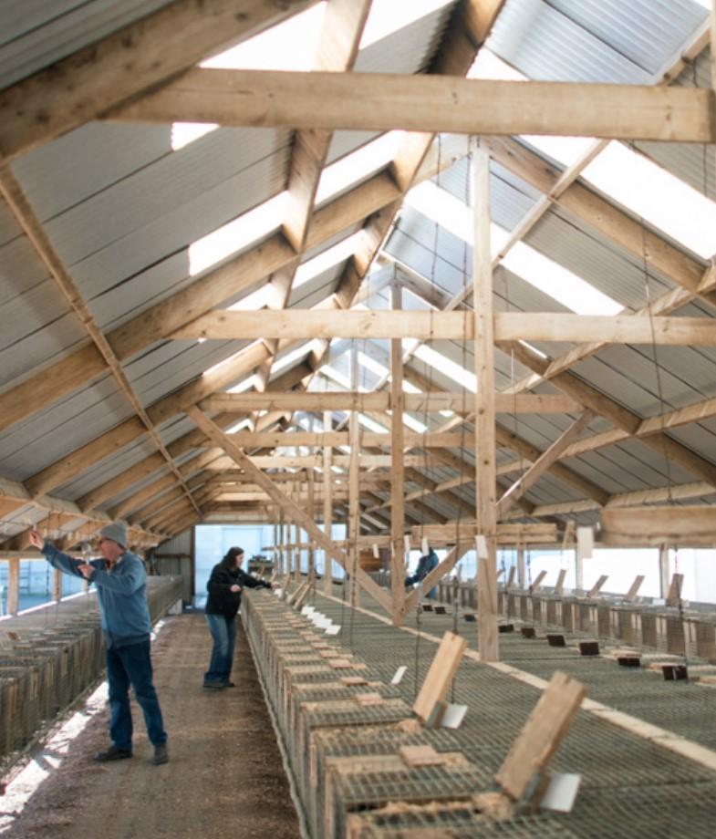 Каждая норковая ферма проверяется и оценивается по критериям, установленным в своем регионе