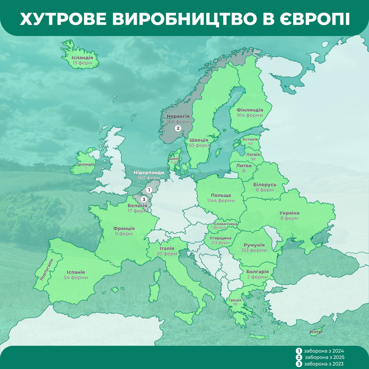 Производство меха в Европе