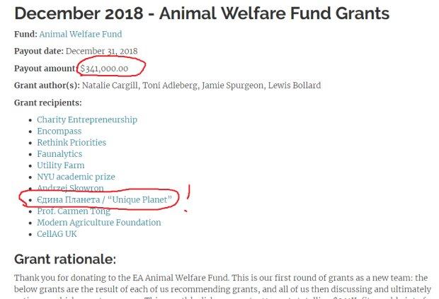 Animal Welfare Fund в декабре 2018 выделил $341 000 зоозащитным организациям, в том числе и «Единой планете» (ХутроOFF)