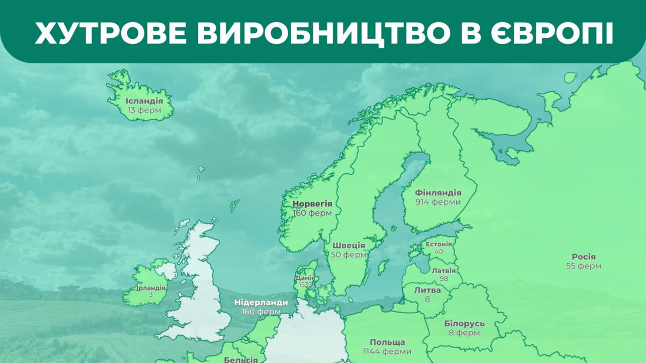 Украинские зверофермы утилизировали более 25 000 тонн отходов птицефабрик