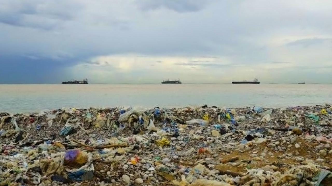 Эко-шуба, которая убивает экологию
